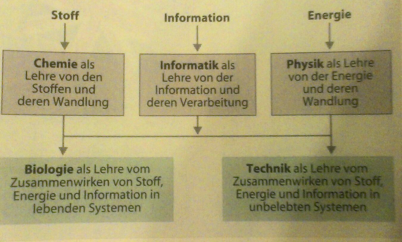 Norbert Beier: Informatik und die klassischen Naturwissenschaften (MNU Heft 3, 2006)